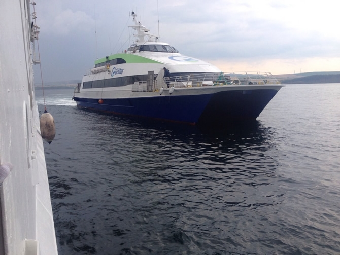 GESTAŞ, CELESTYAL CRYSTAL gemisindeki yolcuları tahliye ediyor galerisi resim 11