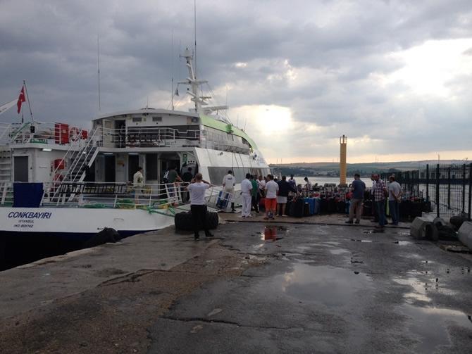 GESTAŞ, CELESTYAL CRYSTAL gemisindeki yolcuları tahliye ediyor galerisi resim 24