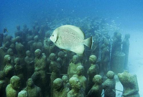 Denizin dibinde ürkütücü manzara galerisi resim 10