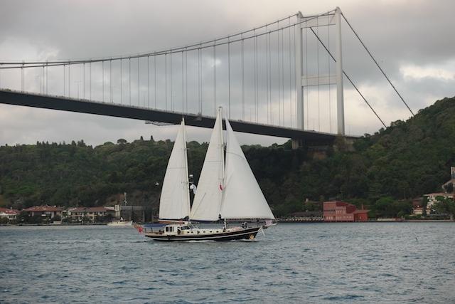 The Bodrum Cup'ın İstanbul ayağı başladı galerisi resim 45