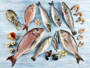 Su ürünleri ihracatının yüzde 73'ünü Egeli balıkçılar gerçekleştirdi