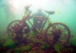 Deniz altında 145 çeşit eşya