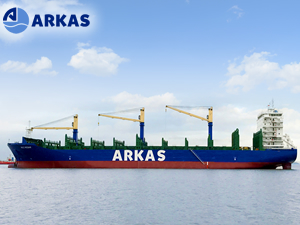 Arkas filosu 51 konteyner gemisine ulaştı