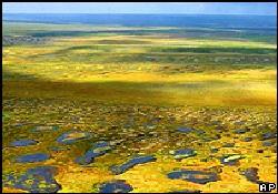 Dünya iklimine Sibirya alarmı