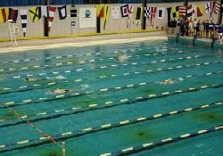 Yüzme Şampiyonası İstanbul'da başladı