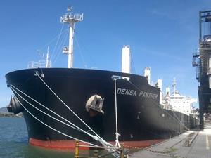 Marinsa Denizcilik'e ait M/V DENSA PANTHER, Kanada'da tutuklandı