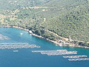 Deniz kıyılarında balık tesisleri kurulabilecek