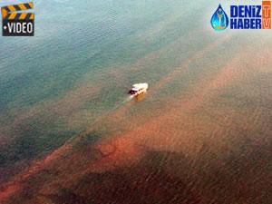 Fethiye Körfezi'ndeki kirlilik için harekete geçiliyor