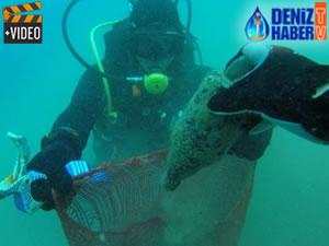 Gündoğan'da deniz dibi temizliği düzenlendi