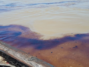 New Orleans'ta petrol sızıntısı yaşanıyor