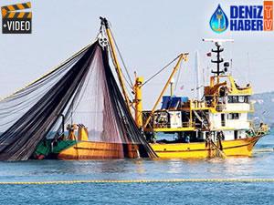 Balık stokları kirlilikten etkilenerek zarar gördü