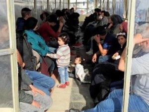 Çeşme açıklarında 47 kaçak göçmen yakalandı