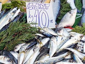 Çanakkale'de balık fiyatları sevindirdi