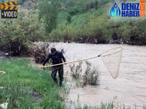 Habur Çayı'nda tehlikeye aldırmadan balık avlıyorlar