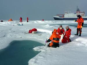 Arktik Okyanusu'nda mikroplastik miktarı fazla çıktı
