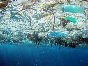 Her yıl okyanuslara '8 milyon ton' plastik karışıyor