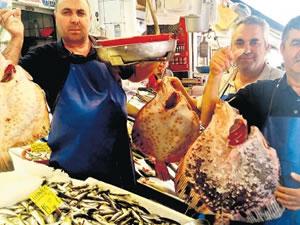 Aşırı avcılık, kalkan balığının da sonunu getirdi