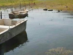 Bursa'da kaçak avlanan balıkçılara operasyon düzenlendi