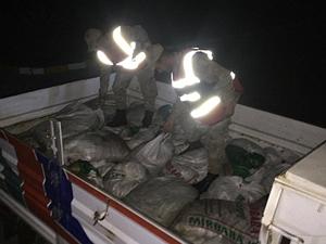 Muradiye'de 8.5 ton kaçak avlanmış inci kefali balığı ele geçirildi