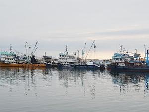 Ordulu balıkçılar teknelerini bakıma aldı