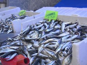 Bilecik'te tezgahları Norveç balıkları süslüyor