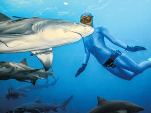 İki cesur kadın, köpek balıklarıyla yüzdü