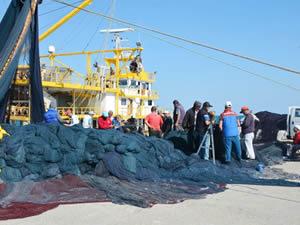 Sinop'ta balıkçılar yeni sezona hazırlanıyor
