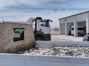 Ercişte 3.5 ton inci kefali ele geçirildi