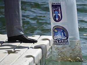 Ankara'da göl ve göletlerde balıkçılık artırılacak