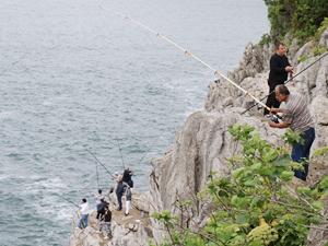 Zonguldak'ta metrelerce yüksekte balık avlıyorlar