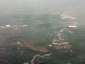 Sel sularının taşıdığı çöpler Karamürsel Sahili'ni kirletti