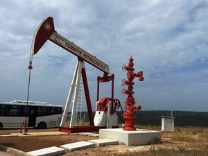 TPAO, Çorlu'da doğalgaz arayacak