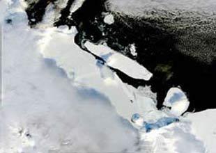 Kutupta buzlar eridi, defineciler ortaya çıktı
