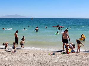Van'ın Erciş ilçesinde plaj sezonu törenle açıldı