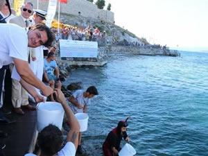 Kuşadası'nda 6 bin balık yavrusu körfeze bırakıldı