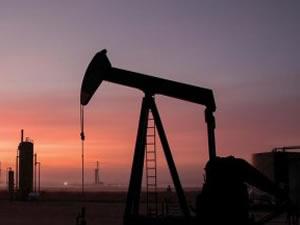 TPAO ve Arar 7 bölgede petrol aramak için başvurdu