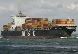 MSC'den Güney Amerika'ya sefer