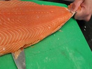 Tokat'ta yetiştirilen somon balıkları dünyaya satılıyor