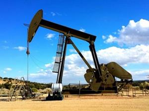 TPAO'ya beş ilde altı petrol arama ruhsatı verildi
