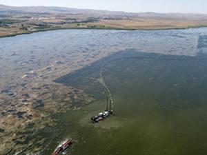 Mogan Gölü'nün yüzde 55'i temizlendi
