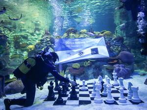 Dünya Satranç Günü su altında kutlandı
