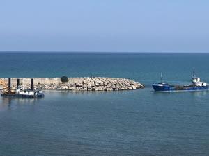 Alaplı Balıkçı Barınağı'nda tarama çalışmaları yeniden başladı