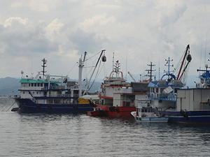 Fas, AB ile balıkçılık anlaşmasını yeniledi
