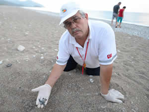 22 yıldır yavru kaplumbağaları denizle buluşturuyor
