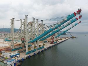 Safiport Derince'nin RTG ve STS'leri limanda hazır
