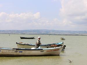 Manyas Gölü'nde balık popülasyonu azalıyor