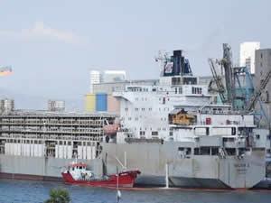 6 bin 549 büyükbaş hayvan, Alsancak Limanı'na getirildi