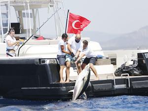 MOST Bodrum Turnuvası'nda en büyük balığı yakamak için yarışacaklar