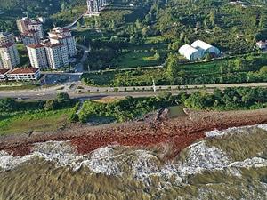Sel felaketinin yaşandığı Ordu'da sahil kızıla büründü