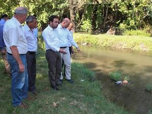 Kütahya'da toplu balık ölümleri görüldü